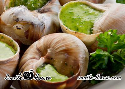 Bourguignon snails